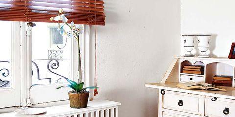 Wood, Room, Interior design, Flowerpot, Drawer, Chest of drawers, Furniture, Wall, Floor, Hardwood,