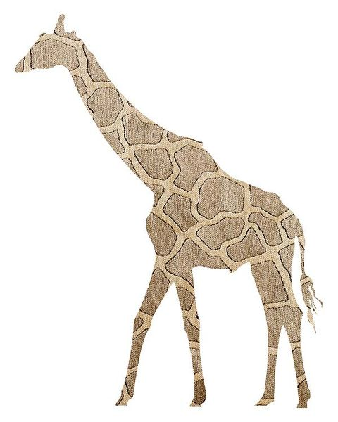 Giraffe, Giraffidae, Brown, Natural environment, Organism, Vertebrate, Natural landscape, Terrestrial animal, Line, Jaw,