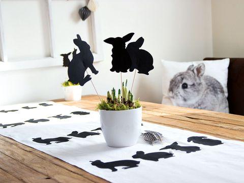 Flowerpot, Interior design, Shadow, Houseplant, Felidae, Still life photography, Plywood, Herb, Small to medium-sized cats, Cat,
