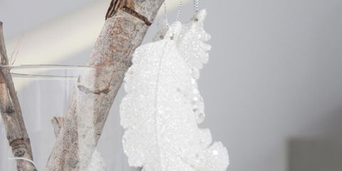 Twig, Natural material, Sculpture, Vase, Still life photography, Transparent material,