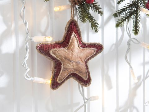 Christmas decoration, Christmas ornament, Christmas, Holiday ornament, Ornament, Star, Creative arts, Silver, Conifer, Transparent material,
