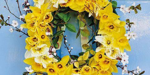 Branch, Wreath, Yellow, Petal, Flower, Twig, Cut flowers, Flower Arranging, Floristry, Floral design,