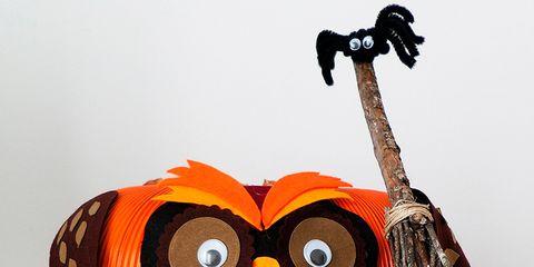 Brown, Orange, Leaf, Twig, String instrument, Beak, Toy, Creative arts, Stuffed toy, Owl,