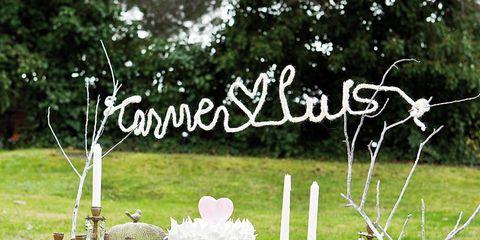 Tablecloth, Branch, Textile, Linens, Home accessories, Flower Arranging, Toy, Flowerpot, Ceremony, Bouquet,