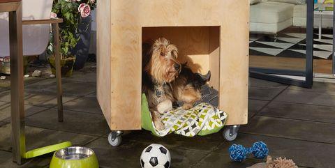 Caseta para perros DIY