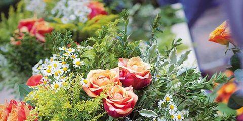 Bouquet, Flower, Petal, Floristry, Cut flowers, Flower Arranging, Floral design, Flowering plant, Rose family, Rose order,