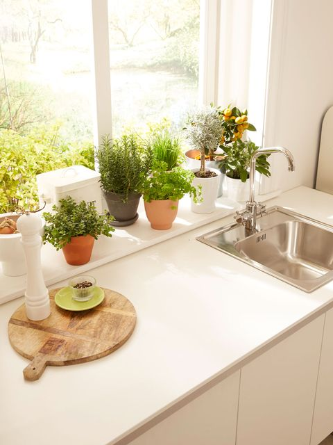 White, Property, Countertop, Room, Interior design, Furniture, Sink, Yellow, Kitchen, Table,