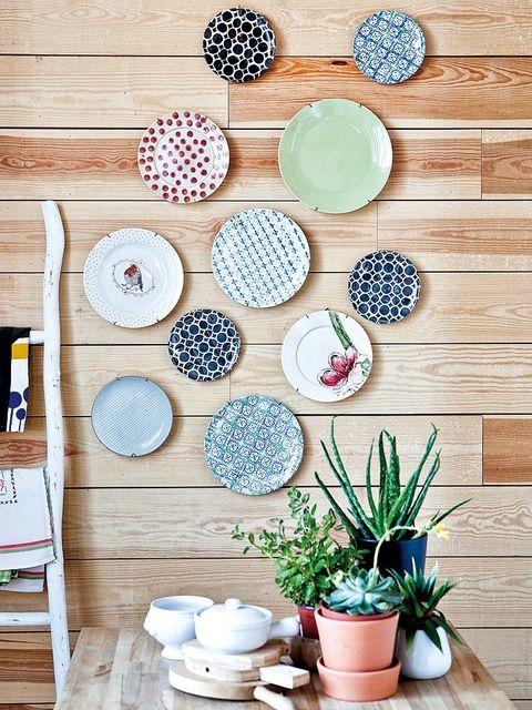 Flowerpot, Dishware, Pattern, Serveware, Porcelain, Houseplant, Hardwood, Circle, Turquoise, Ceramic,
