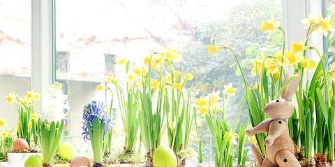 Lavender, Flowering plant, Flowerpot, Plant stem, Vase, Floral design, Home fencing, Paint, Perennial plant, Annual plant,