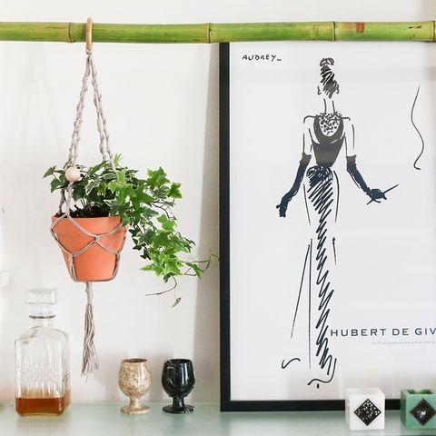Flowerpot, Drinkware, Barware, Houseplant, Peach, Vase, Skeleton, Still life photography, Human anatomy, Rib,