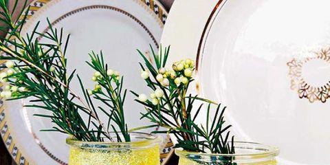 Yellow, Liquid, Dishware, Serveware, Drink, Tableware, Ingredient, Majorelle blue, Flowerpot, Drinkware,