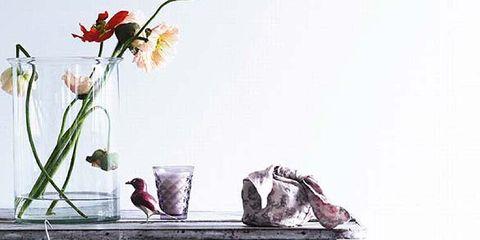 Petal, Flower, Purple, Flowering plant, Grey, Cut flowers, Bag, Home accessories, Violet, Still life photography,