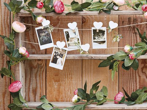 Flower, Branch, Plant, Spring, Twig, Floral design, Wood, Floristry, Flowerpot, Houseplant,