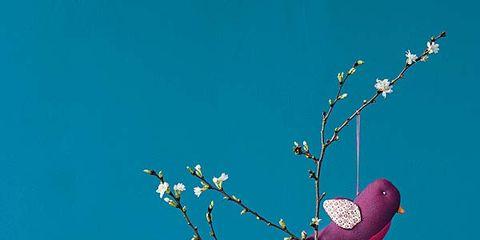 Branch, Blue, Twig, Flower, Turquoise, Teal, Aqua, Art, Still life photography, Creative arts,
