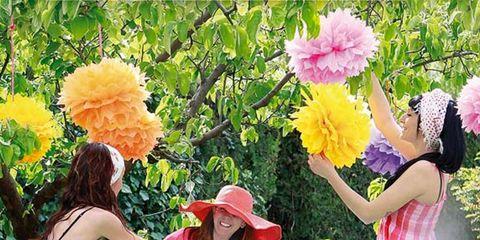 Green, Leisure, Dress, Outdoor furniture, Petal, Table, Furniture, Pink, Summer, Outdoor table,