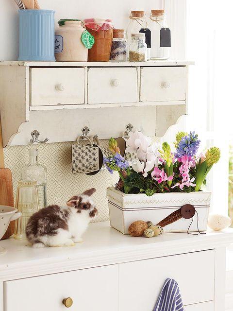 Vertebrate, Room, Carnivore, Small to medium-sized cats, Felidae, Cat, Home, Interior design, Lavender, Serveware,