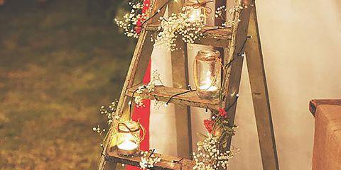 Flower Arranging, Cut flowers, Floral design, Ornament, Christmas,