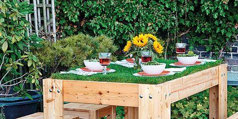 Wood, Plant, Hardwood, Table, Furniture, Wood stain, Outdoor table, Outdoor furniture, Street furniture, Plywood,