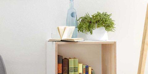 Wood, Shelving, Shelf, Plywood, Book, Bottle, Fedora, Paint, Still life photography, Costume hat,