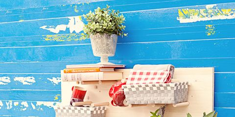 Flowerpot, Dishware, Majorelle blue, Houseplant, Interior design, Porcelain, Plate, Circle, Kitchen utensil, Herb,