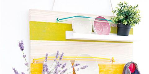 Serveware, Dishware, Household supply, Lavender, Flowerpot, Interior design, Kitchen utensil, Shelving, Houseplant, Porcelain,