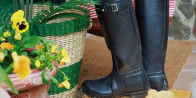 Boot, Riding boot, Knee-high boot, Tan, Flowerpot, Leather, Rain boot, Synthetic rubber, Costume accessory, Motorcycle boot,
