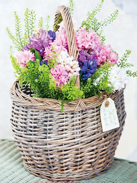 Flower, Basket, Storage basket, Purple, Flowering plant, Lavender, Wicker, Home accessories, Flower Arranging, Floral design,