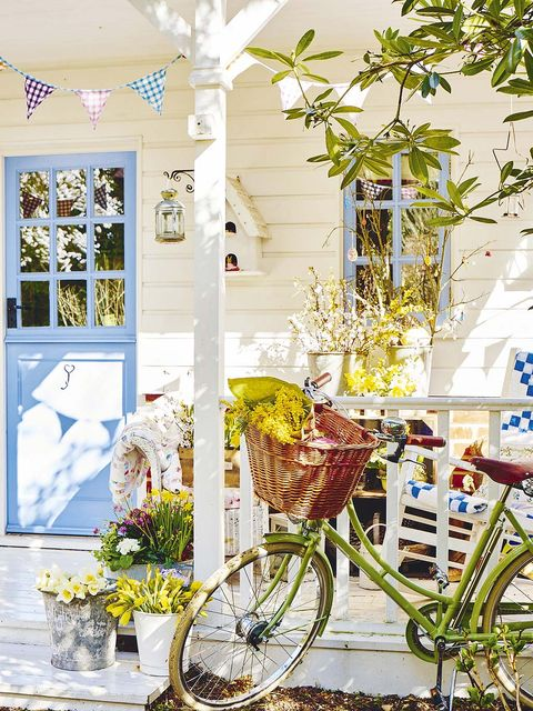 Yellow, Bicycle, Bicycle wheel, Vehicle, Spring, Plant, Room, Architecture, Flower, Window,