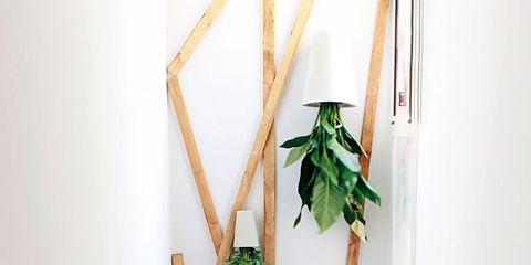 Wood, Plant stem, Creative arts, Natural material,