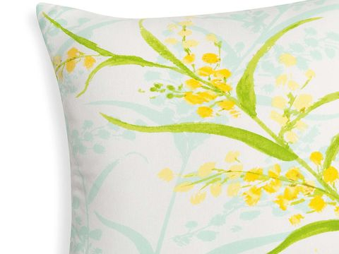 Throw pillow, Yellow, Green, Cushion, Pillow, Leaf, Botany, Textile, Furniture, Plant,