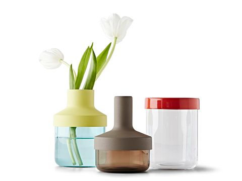 Liquid, Brown, Petal, White, Flower, Peach, Flowering plant, Cut flowers, Tints and shades, Beige,
