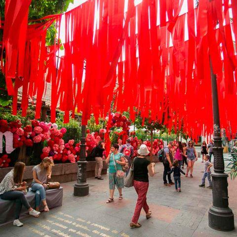Red, Pink, Magenta, Pedestrian, Flowerpot, Coquelicot, Backpack, Walking, Perennial plant,