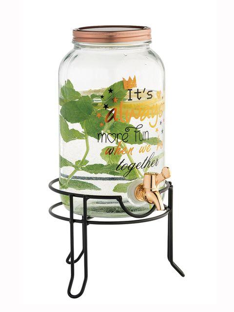Mason jar, Home accessories, Glass, Plant, Drinkware, Tableware,