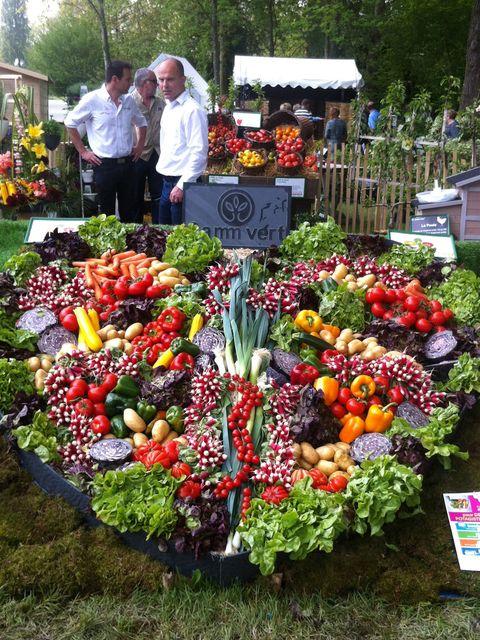 Plantas Y Flores Para Decorar Tu Jardin - Decoracion-de-jardines-con-plantas