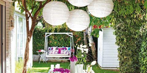 Plant, Table, Furniture, Garden, Backyard, Outdoor table, Hardwood, Outdoor furniture, Yard, Linens,