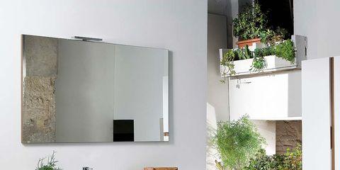 Plant, Property, Interior design, Wall, Flowerpot, Room, Interior design, Houseplant, Rectangle, Mirror,