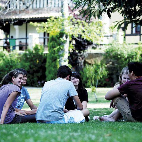 Photograph, People, Grass, Sitting, Lawn, Friendship, Leisure, Botany, Fun, Summer,