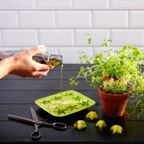 Flowerpot, Kitchen utensil, Houseplant, Nail, Herb, Spoon, Garden, Annual plant, Tool, Produce,