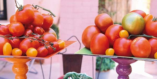Tomates: recetas