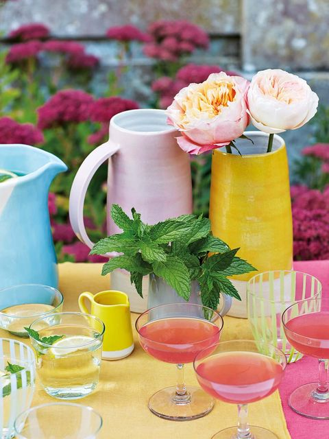Serveware, Drinkware, Dishware, Petal, Tableware, Drink, Flower, Cup, Pink, Table,