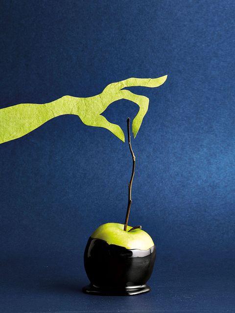 Green, Yellow, Botany, Still life photography, Still life, Kitchen utensil,
