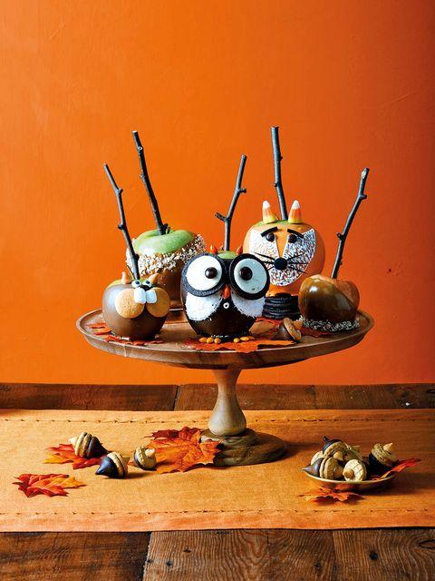 Orange, Still life photography, Toy, Still life, Culinary art, Garnish, appetizer,