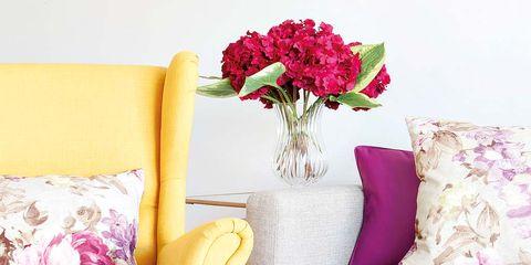Purple, Room, Red, Petal, Pink, Magenta, Furniture, Violet, Interior design, Throw pillow,