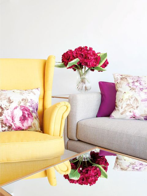 Yellow, Room, Purple, Petal, Magenta, Flower, Pink, Throw pillow, Violet, Pillow,