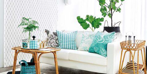 Green, Blue, Interior design, Room, Branch, Floor, Flooring, Furniture, Wall, Teal,