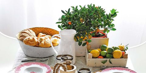 Serveware, Dishware, Food, Tableware, Porcelain, Cuisine, Drinkware, Produce, Dish, Teacup,