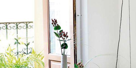 Flowerpot, Interior design, Floor, Flooring, Room, Interior design, Home, Carpet, Houseplant, Vase,