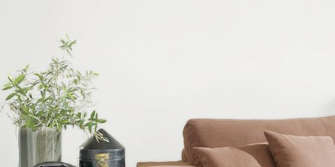 Brown, Couch, Beige, Armrest, Interior design, Vase, Flowerpot, Living room, Houseplant, Still life photography,