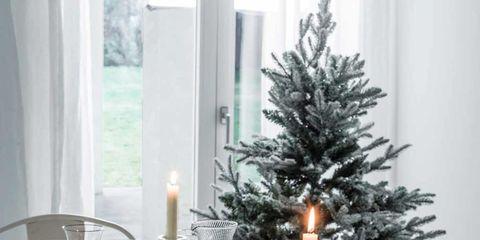 Serveware, Dishware, Glass, Candle, Interior design, Tableware, Christmas decoration, Drinkware, Centrepiece, Evergreen,