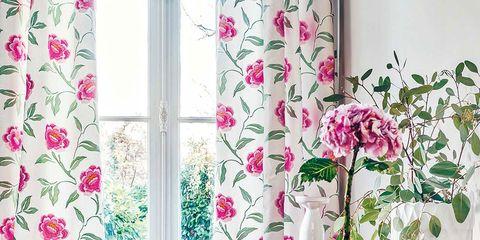 Petal, Serveware, Room, Purple, Interior design, Pink, Flower, Interior design, Lavender, Magenta,
